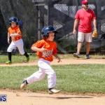 Youth Baseball Bermuda, April 19 2014-48