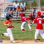 Youth Baseball Bermuda, April 19 2014-49