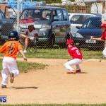 Youth Baseball Bermuda, April 19 2014-53