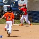 Youth Baseball Bermuda, April 19 2014-54
