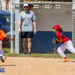 Youth Baseball Bermuda, April 19 2014-63