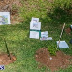 Bermuda Onion Day, May 17 2014-17