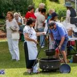 Bermuda Onion Day, May 17 2014-2