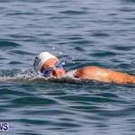 Catlin National Triathlon Swimming Bermuda, May 11 2014-107