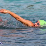 Catlin National Triathlon Swimming Bermuda, May 11 2014-116