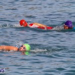 Catlin National Triathlon Swimming Bermuda, May 11 2014-118