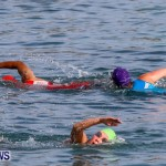 Catlin National Triathlon Swimming Bermuda, May 11 2014-119