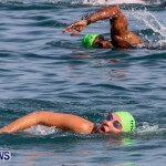 Catlin National Triathlon Swimming Bermuda, May 11 2014-120
