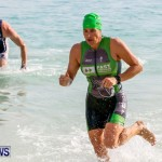 Catlin National Triathlon Swimming Bermuda, May 11 2014-169