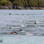Catlin National Triathlon Swimming Bermuda, May 11 2014-179