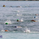 Catlin National Triathlon Swimming Bermuda, May 11 2014-180