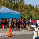 Catlin National Triathlon Swimming Bermuda, May 11 2014-2