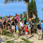 Catlin National Triathlon Swimming Bermuda, May 11 2014-24