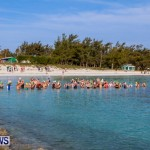 Catlin National Triathlon Swimming Bermuda, May 11 2014-31
