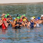 Catlin National Triathlon Swimming Bermuda, May 11 2014-38