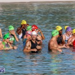 Catlin National Triathlon Swimming Bermuda, May 11 2014-40