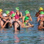 Catlin National Triathlon Swimming Bermuda, May 11 2014-41