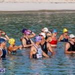 Catlin National Triathlon Swimming Bermuda, May 11 2014-42