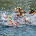 Catlin National Triathlon Swimming Bermuda, May 11 2014-49