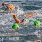 Catlin National Triathlon Swimming Bermuda, May 11 2014-52