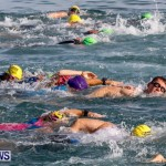Catlin National Triathlon Swimming Bermuda, May 11 2014-54