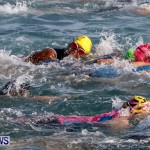 Catlin National Triathlon Swimming Bermuda, May 11 2014-55