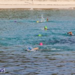 Catlin National Triathlon Swimming Bermuda, May 11 2014-61