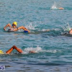 Catlin National Triathlon Swimming Bermuda, May 11 2014-65