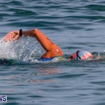 Catlin National Triathlon Swimming Bermuda, May 11 2014-97