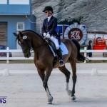 Horses Dressage Bermuda, May 3 2014-10