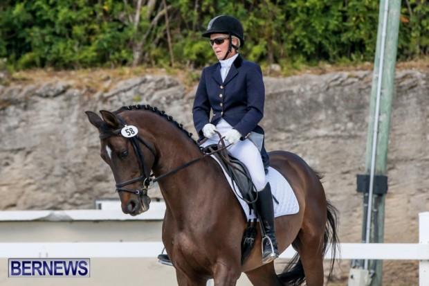 Horses Dressage Bermuda, May 3 2014-11