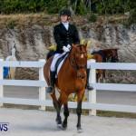 Horses Dressage Bermuda, May 3 2014-12