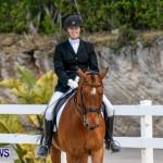 Horses Dressage Bermuda, May 3 2014-13