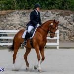 Horses Dressage Bermuda, May 3 2014-15
