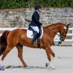 Horses Dressage Bermuda, May 3 2014-16