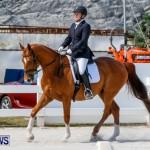 Horses Dressage Bermuda, May 3 2014-17