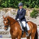 Horses Dressage Bermuda, May 3 2014-18