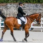 Horses Dressage Bermuda, May 3 2014-19