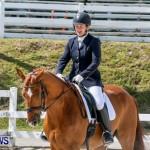 Horses Dressage Bermuda, May 3 2014-23