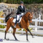 Horses Dressage Bermuda, May 3 2014-25