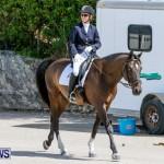 Horses Dressage Bermuda, May 3 2014-27