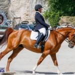 Horses Dressage Bermuda, May 3 2014-28