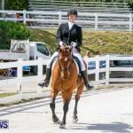 Horses Dressage Bermuda, May 3 2014-33
