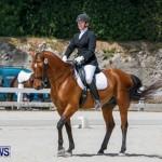 Horses Dressage Bermuda, May 3 2014-34