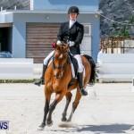 Horses Dressage Bermuda, May 3 2014-35