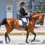 Horses Dressage Bermuda, May 3 2014-37
