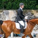 Horses Dressage Bermuda, May 3 2014-38