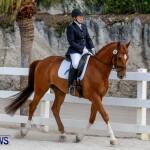Horses Dressage Bermuda, May 3 2014-6
