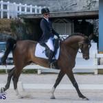 Horses Dressage Bermuda, May 3 2014-7