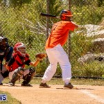 YAO Youth Baseball Bermuda, May 3 2014-1